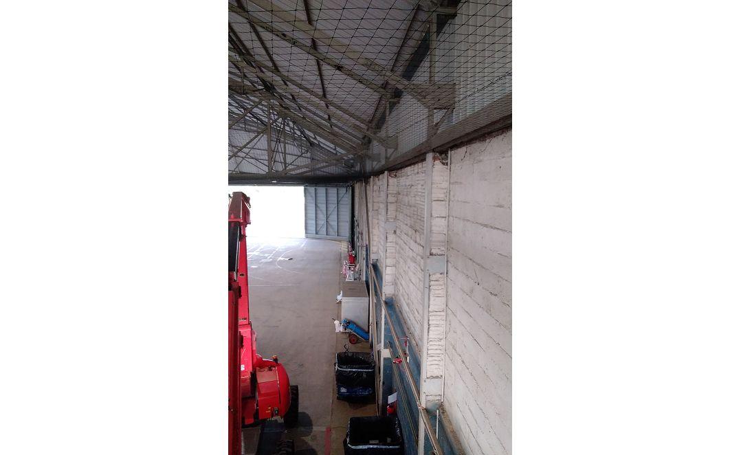 PHS – Filet anti pigeons Bretagne
